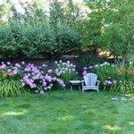 Bella Vista's lovely garden