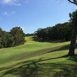 Vista su uno dei bellissimi campi da Golf