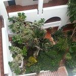 Сад внутри отеля
