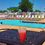 Saltwater pool next to Surf Rider's poolside bar. Get your Rum Runners before the season ends!