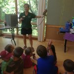 Learning about the owls