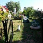 Der Garten. Man kann sich hinsetzen und sein Tee oder Kaffee genießen zwischen den wunderschönen