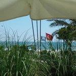 overlooking beach