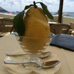 Amazing lemon sorbet