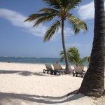 mis zonas favoritas: la playa