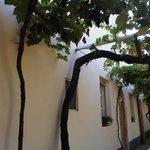 Hotel Massa Vecchia Foto