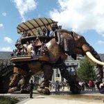 l'elefante meccanico a spasso