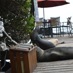 Deck to have dinner and sit by sea lions