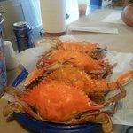 I Got Their Crabs