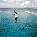 Jump into the sea!