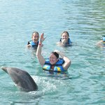 teaching the dolphin how to twirl? or he is teaching me?