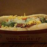 My awesome hot dog