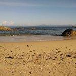 Beach looking northwest
