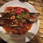 Schöner Fisch, leider tot frittiert!