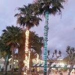 Palmepynt :)