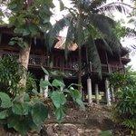 Rainforrest Chalet