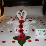 Swans and flowers on our bed for romance