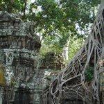 Ангкор Ватт