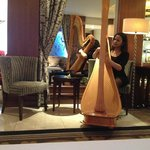 Harp player in the lobby areas