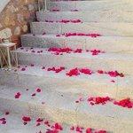 wedding entrance ...