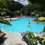 Pool area towards restaurant