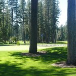Christina Lake Golf Course