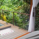 Spa rooms are open to the beautiful sounds of the rain forest