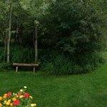 Beautifully landscaped back yard