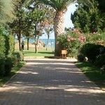 Viale per accedere al mare e alla piscina principale