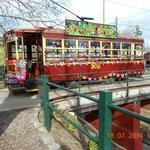 The yarn bombed tram