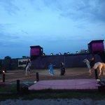 Photo de Cabaret Equestre des Dunes