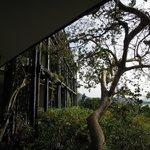 eco-hotel