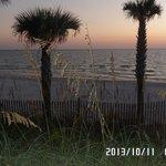 PCB should be Paradise City Beach