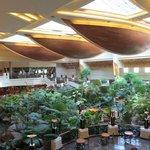 Grand Hyatt Rain Forest