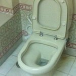 Ancient toilet suite for a 'luxury' hotel