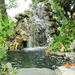 Small waterfall in garden