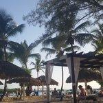 Playa del hotel... la mejor de Republica Dominicana
