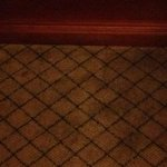 Nasty carpets