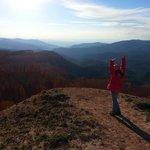 Spectra Point Trail Cedar Breaks