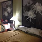 Great, clean and newly renovated room!