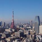 朝、部屋から見た景色。 富士山までバッチリ見えました!