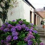 Glebe Gardens and Gallery Foto