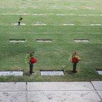 National Memorial Cemetery Oahu - Hawaii 3