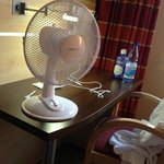 Puny Little fan provided so we do not die of suffocation in the warm stuffy room on a hot summer