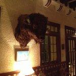 Impressive Bull head in the lobby