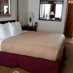 Pet Friendly Room King Size Bed