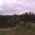 Savannah View