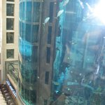 THe fish tank in the lobby