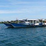 départ des bateaux pour Menjangan