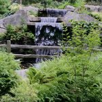 Rhododendron garden water fall